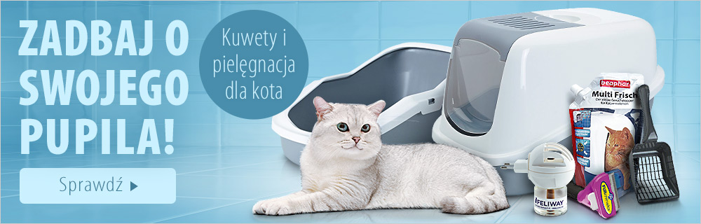 Kuwety i akcesoria do pilęgnacji dla kota