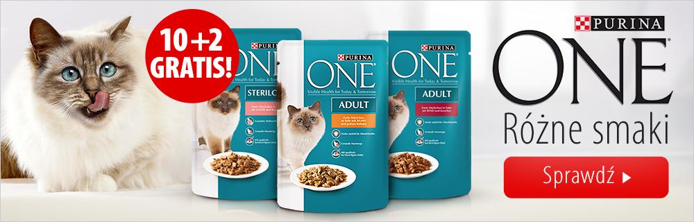 Purina ONE - promocja dla kota