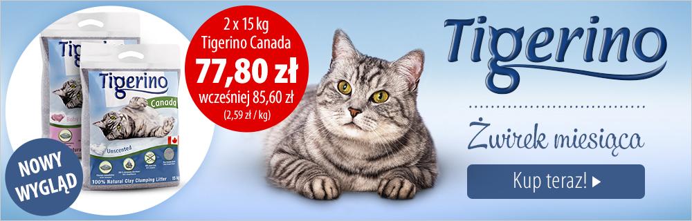 Żwirek miesiąca: Tigerino Canada