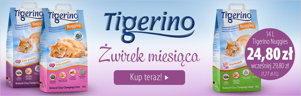 Żwirek miesiąca: Tigerino Nuggies