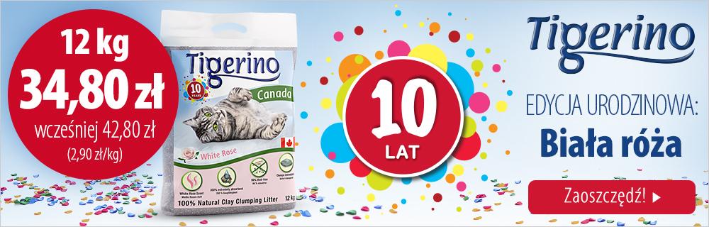 Tigerino: Edycja urodzinowa