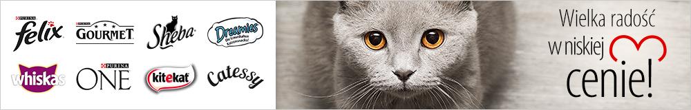 Klasyki sklepowych półek dla kota