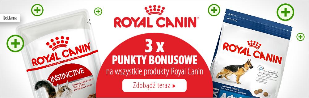 Royal Canin dla psa i kota - teraz 3 x punkty bonusowe