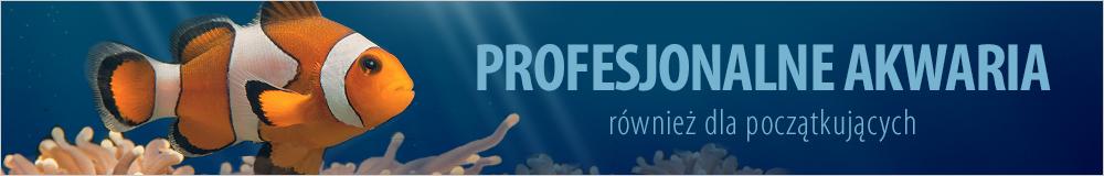 Profesjonalne akwaria