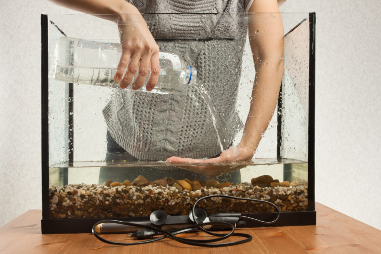 Przygotowanie akwarium