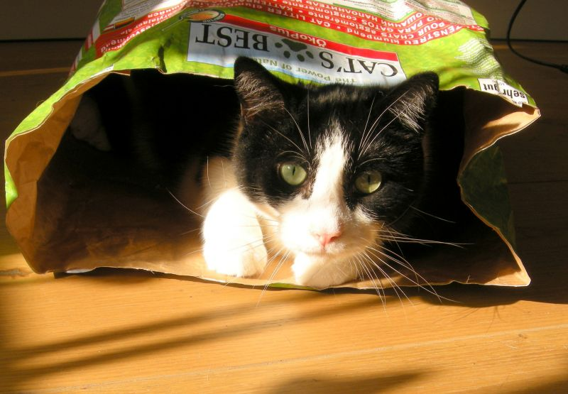 Cat's Best Öko Plus / Original Katzenstreu