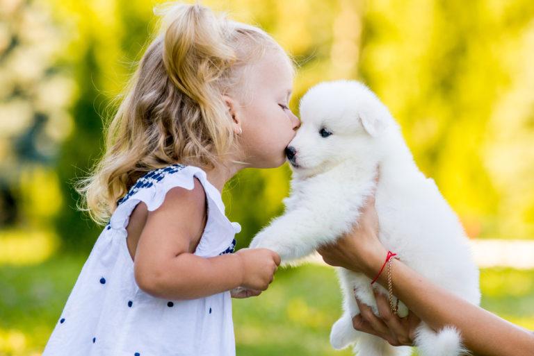 Czy można całować psa