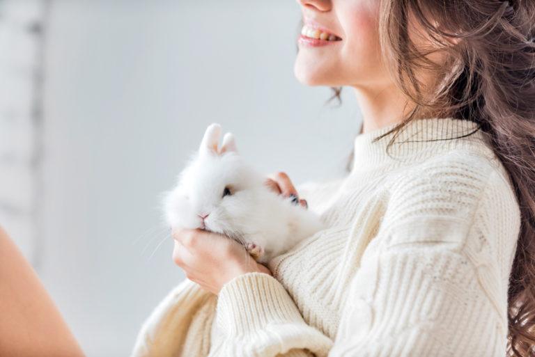 pielęgnacja królika miniaturowego