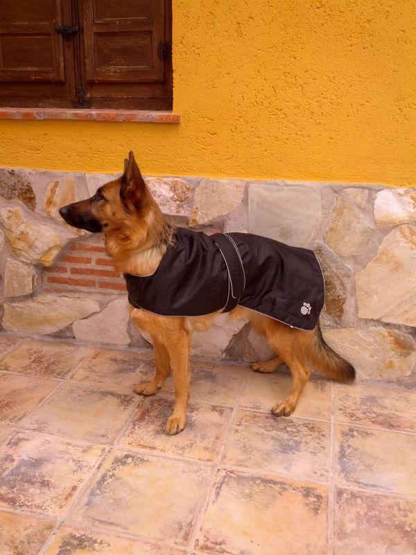 Trixie płaszczyk wodoodporny dla psa