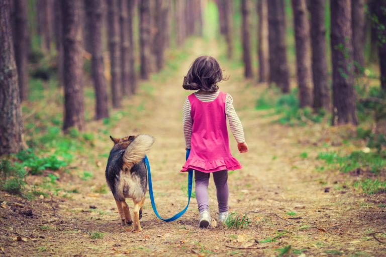 Aktywność fizyczna z psem