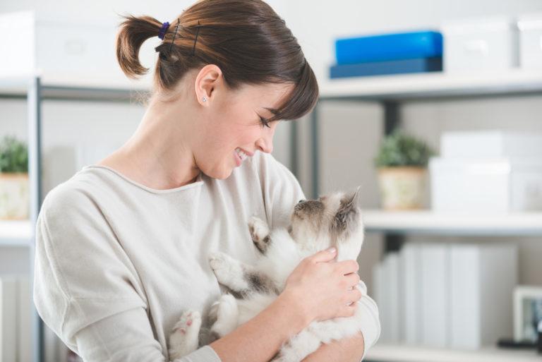 dowody, że kot Cię kocha