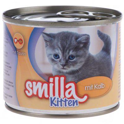 Smilla Kitten Maine Coon