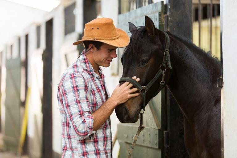 Zrozumieć konia