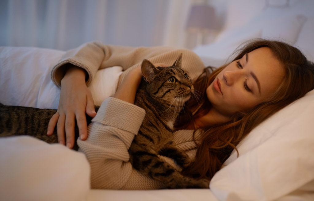 kot miauczy w nocy - co robić?