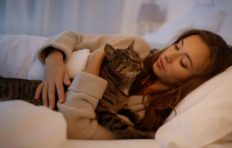 kot nie śpi w nocy