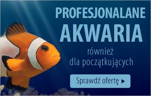 akwaria dla ryb