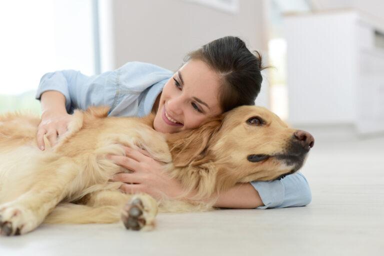 problemy trawienne u psa