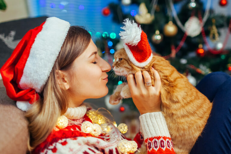 prezenty świąteczne dla kota