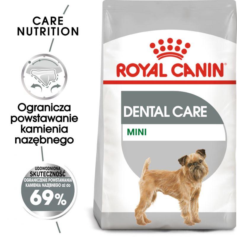 rc ccn dental mini