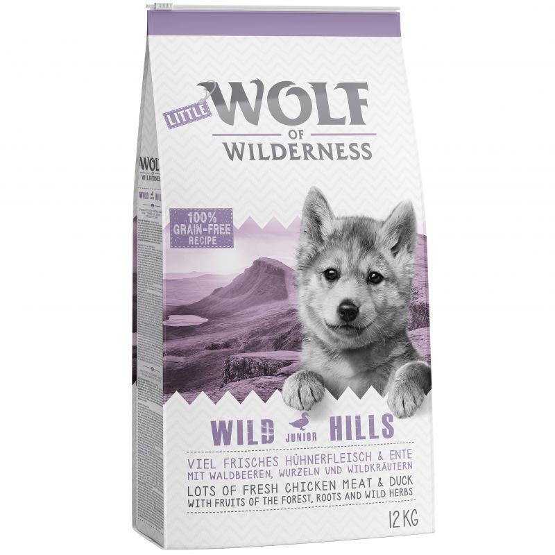 wolf_of_wilderness_junior_wild_hills