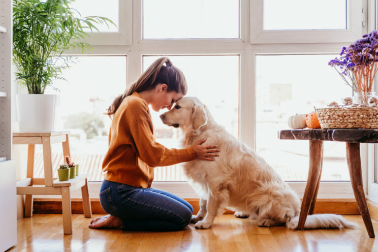 opieka nad psem na kwarantannie