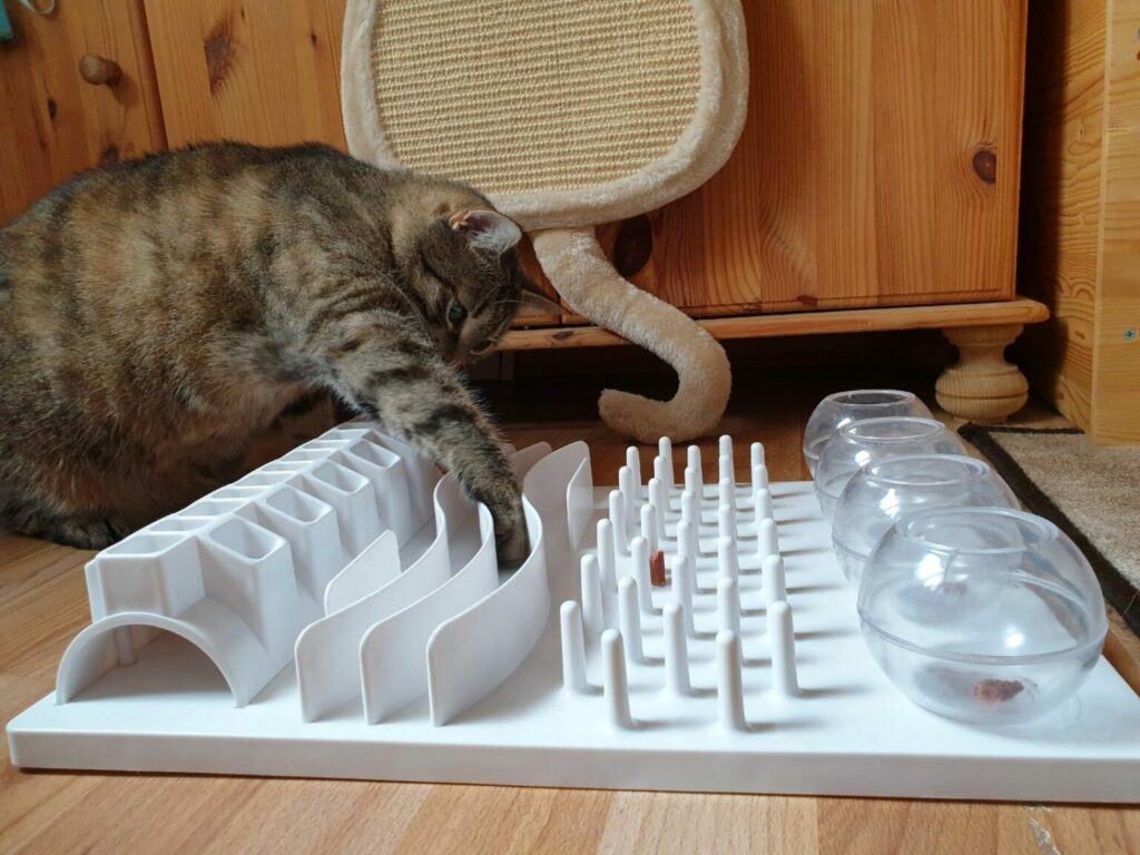 zabawka na smakołyki dla kota