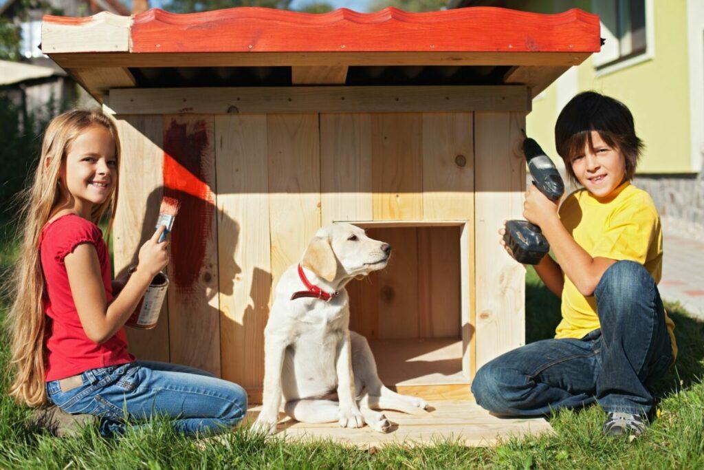 jak zbudować własną budę dla psa